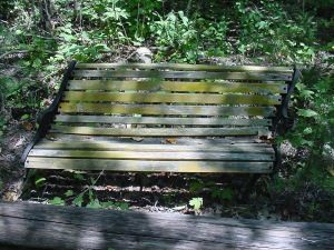 I loved finding this 'skewed' bench in the woods at Furnace Mountain, a Zen retreat center. It reminds me we all have our own leanings.